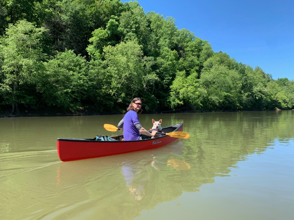 a red canoe on a green river in front of a green forest on a sunny day with a blue sky. A long-haired man wearing a purple t-shirt sits in the canoe, looking back over his shoulder at the camera. A white dog with pointy ears wearing a life vest follows his gaze.